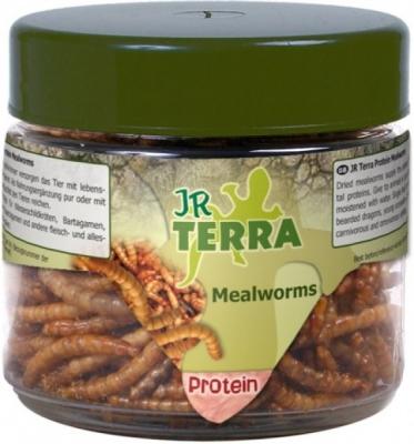 JR Farm Terra Mealworm  20 g