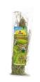 JR Farm Weidelgras-Ernte 80 g vorteilhaft