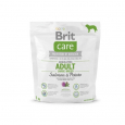 Care Adult Large Breed con Salmón y patatas de Brit 1 kg
