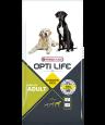 Opti Life Adult Maxi 12.5 kg - Koiranruoka kanalla