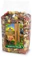 JR Farm Eichhörnchen-Schmaus 600 g