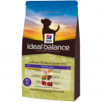 Ideal Balance Canine - Mature Adult Active Longevity with Chicken and Brown Rice Hill's 12 kg Køb online nu
