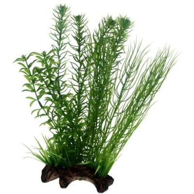 Hobby Flora Root  2, L 2 L