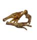 Classic Dog Snack Chicken Feet EAN 4040345001306 - ár