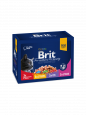 Brit Premium Cat Pouches Family Plate 12x100 g - Kattemad med fisk