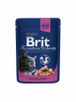 Brit Premium Cat Pouches with Salmon & Trout 100 g