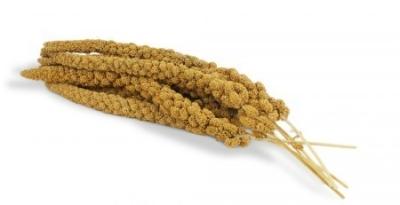 Moreau Kolbenhirse gelb Beutel  500 g, 400 g, 1 kg