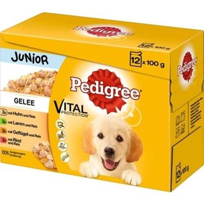 Pedigree Multipack Maaltijdzakjes Junior Gelee 12x100 g