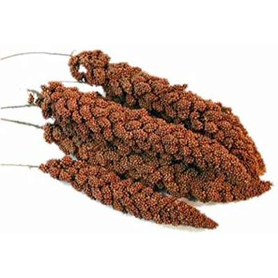 Moreau French Red, Mohar  15 kg