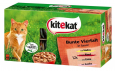 Kitekat  Colorful Variety in Sauce  48x100 g butik