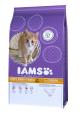 Kitten en Junior, Rijk ean Kip  300 g  van Droogvoer voor kittens