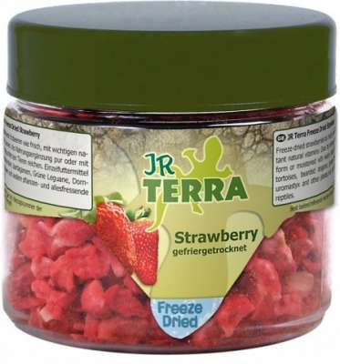 JR Farm Terra Freeze Dried Strawberry  10 g