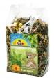 JR Farm Degu Spezial 500 g dabei kaufen und sparen