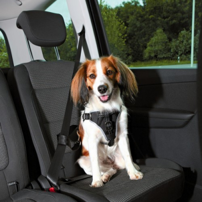 Trixie Auto-Tuig Dog Comfort S-M Zwart