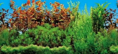 Trixie Aquarium Rear Wall 60x30 cm