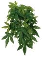 Trixie Planta de Seda Pingente, Abutilon ø20x30 cm