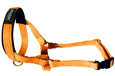 Amiplay Halter Cotton, Orange Orange XS