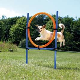 Trixie  Dog Activity Agility Ring ø3x115/ø65 cm EAN 4011905032085 - Preis