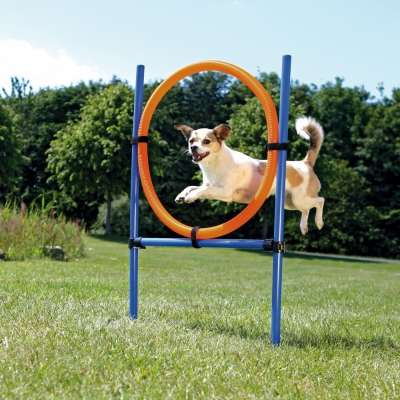 Trixie Dog Activity Anello Agility ø3x115/ø65 cm