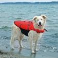 Trixie Gilet de Flottaison pour Chiens