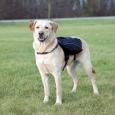 Trixie Backpack for Dogs Black 31x17 cm billige