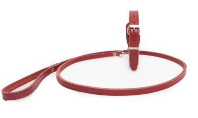 Bark&Bones Set Collar with Leash Rosso