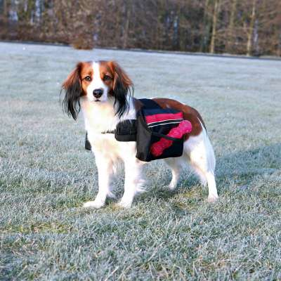 Trixie Backpack for Dogs M Svart