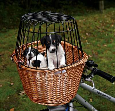 Trixie Bicycle Basket 44×48×33 cm