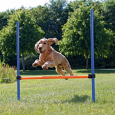 Trixie Agility Hurdle  Colorfulness
