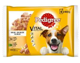 Vital Protection Multipack Chicken & Lamb in Jelly Pedigree 8410136001550