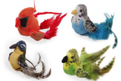 All for Paws Natural Instincts Bouncing Bird Bouncing Bird  10x20x7 cm