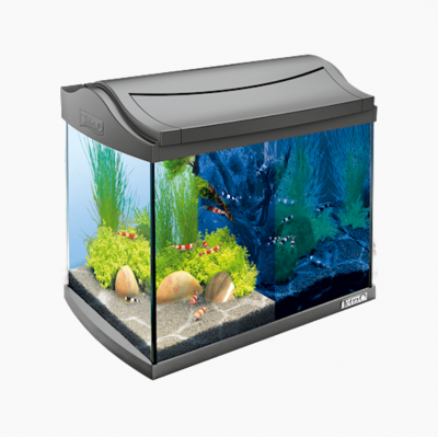 Tetra AquaArt LED Aquarium Shrimps Schwarz 20 l