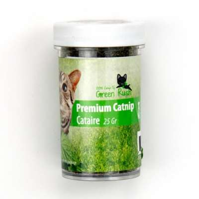All for Paws Green Rush Premium Catnip Powder