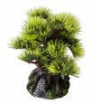EBI Aqua Della Bonsai Mini Sort B billig bestellen