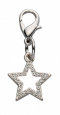 Pendant Lucky Star - Czech Crystal   by Europet-Bernina buy online