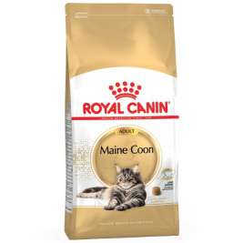 Royal Canin Feline Breed Nutrition Maine Coon Adult  4 kg