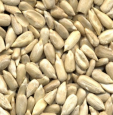 Sunflower seeds shelled  25 kg by Ruvo buy online