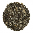 Striped Sunflower Seeds  20 kg  from Birds