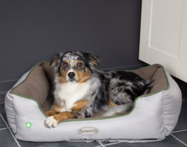 Insect Shield Soft Walled Dog Bed de chez Scruffs  XL, S, M, L Avis