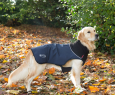 Scruffs Thermal Hundemantel Dunkelblau