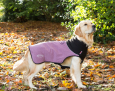 Thermal Hundemantel von Scruffs Fuchsia
