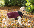 Thermal Hundemantel von Scruffs Bordeaux