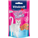 Cat Yums + Salmon Salmão 40 g by Vitakraft compre online