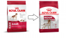 Royal Canin Size Health Nutrition Medium Adult 10 kg Online Shop