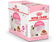 Royal Canin Feline Health Nutrition Multipack Kitten kastikkeessa 12x85 g Halvat