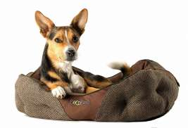 BeCo Pets Donut Bed  Bruin