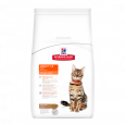 Hill's Science Plan Feline Adult Optimal Care Lam 2 kg - Kattenvoer met rijst