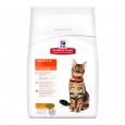 Hill's Science Plan Feline - Adult Optimal Care met Kip online winkel