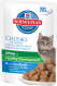 Hill's Science Plan - Kitten Healthy Development Seefisch in Soße 12x85 g Online Shop