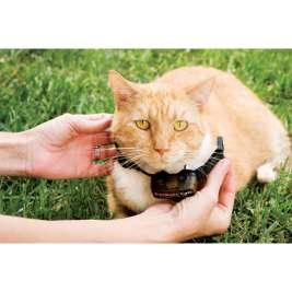 PetSafe Collar receptor adicional para limitador de zona deluxe In-Ground Cat Fence  29 cm  tienda